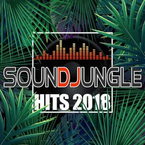 Soundjungle Hits (MP3)