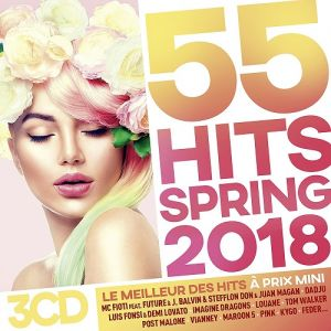 55 Hits Spring (MP3)